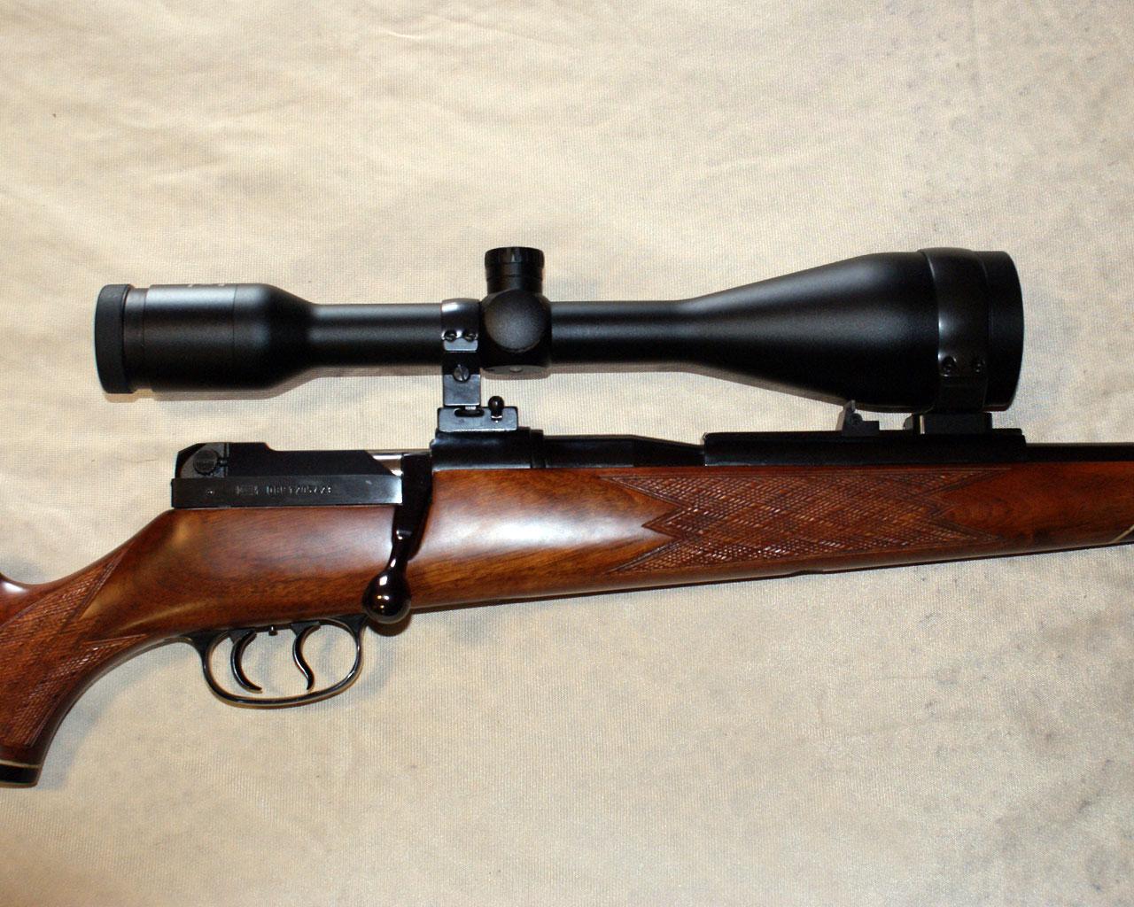 EAW Rifle-scope Mounts - Revivaler