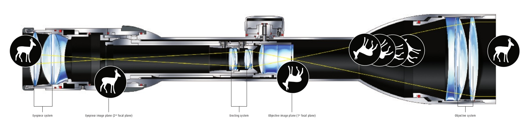 Cutaway diagram of a Schmidt and Bender riflescope. The first focal plane is where the yellow lines representing the light rays converge at the right of the diagram just ahead of the adjustment turret. The second focal plane is to the left of the diagram where the yellow lines converge just before the eyepiece of the riflescope