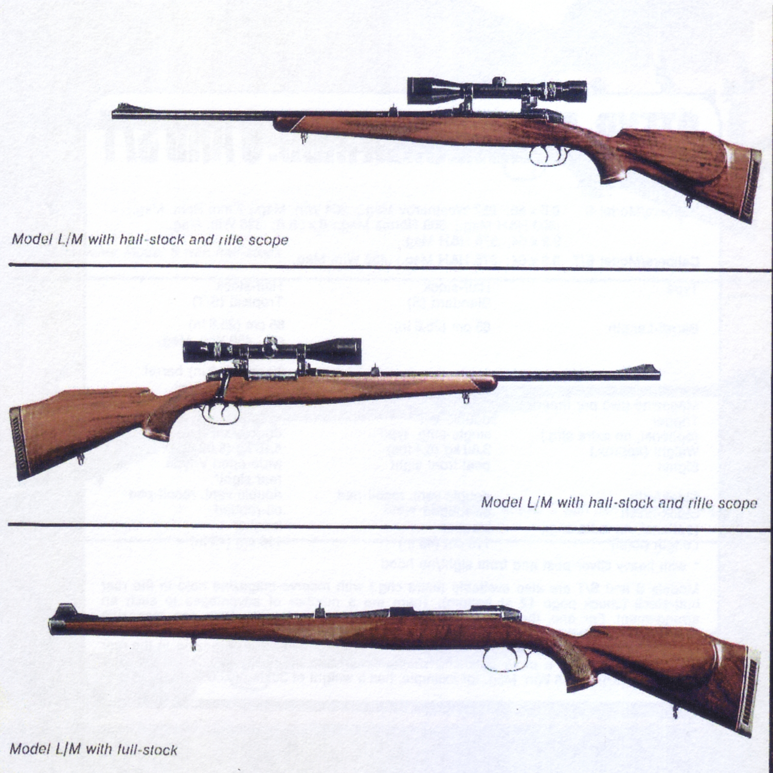 The Mannlicher-Schönauer M72 Model L/M stock style options. (Picture from the original Steyr catalog and courtesy of Steyr.)