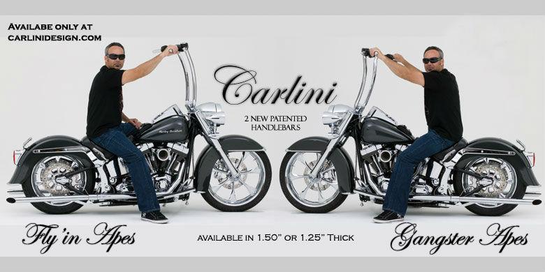 (Picture courtesy Carlini Design).