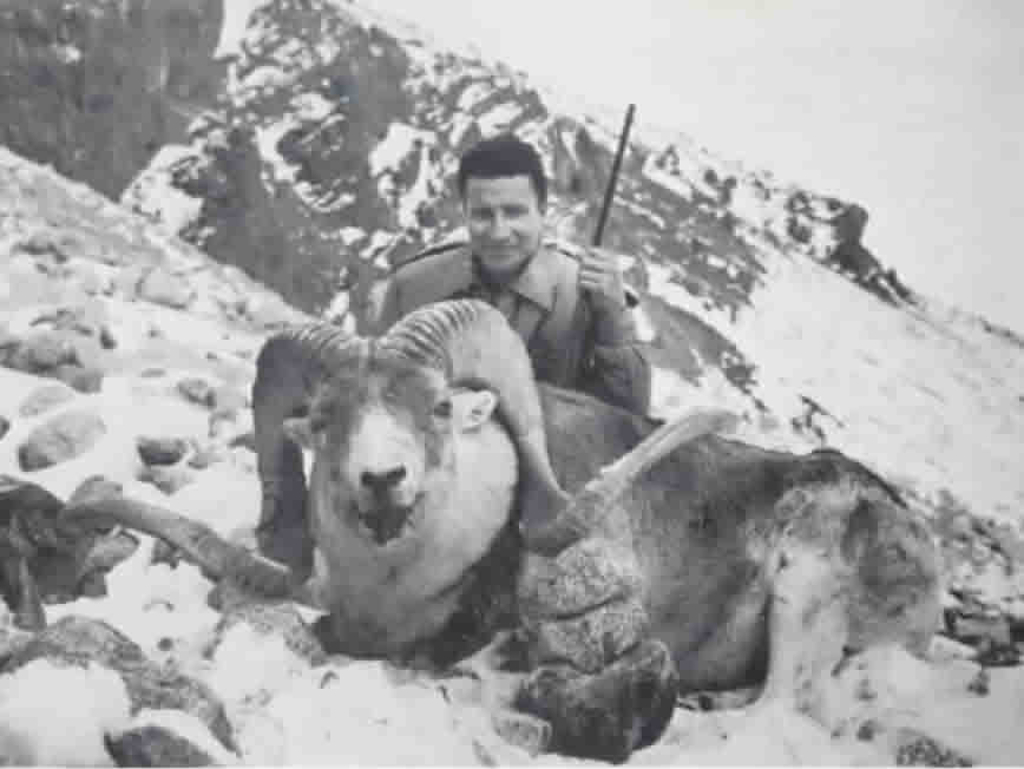 "Elgin Gates Argali ram ""Trophy Hunter in Asia"" book"