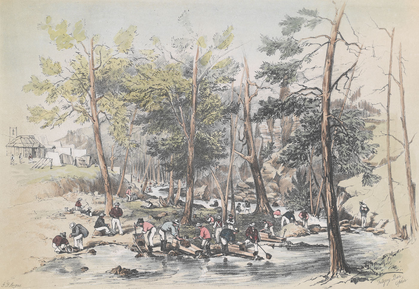 Ophir gold diggings 1851