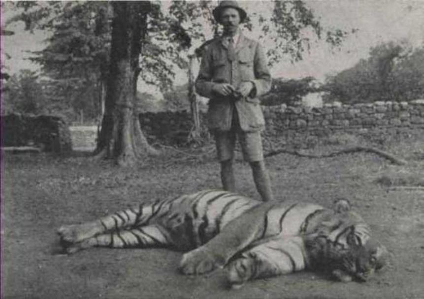 Jim Corbett Champawat Tiger