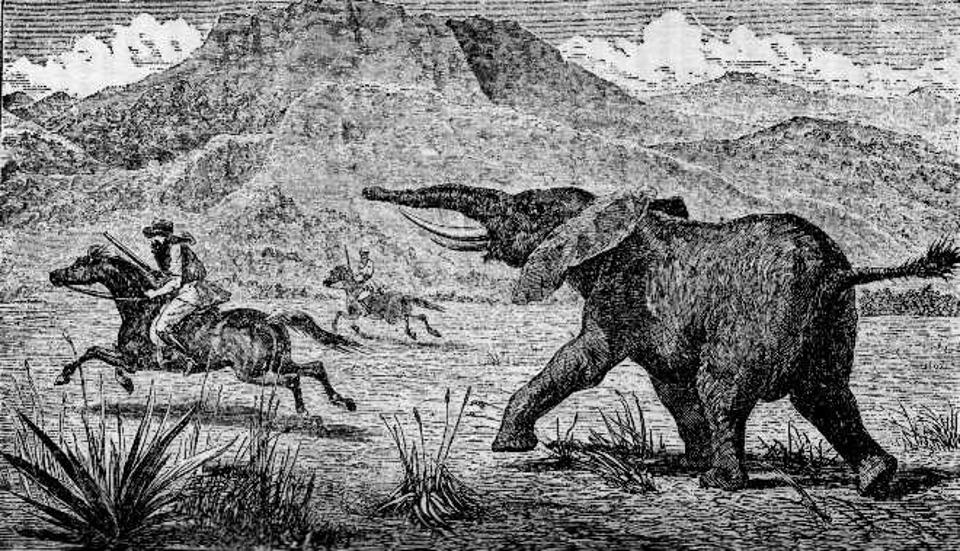 Samuel Baker elephant hunting
