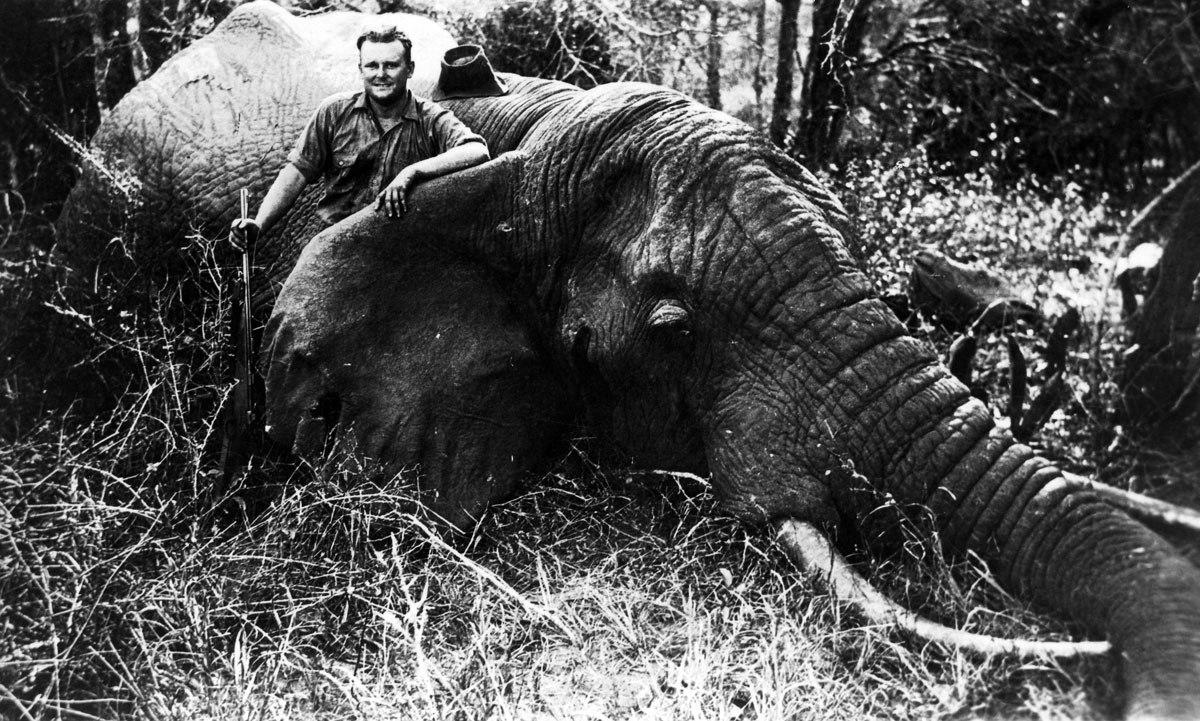 Wally Johnson ivory elephant