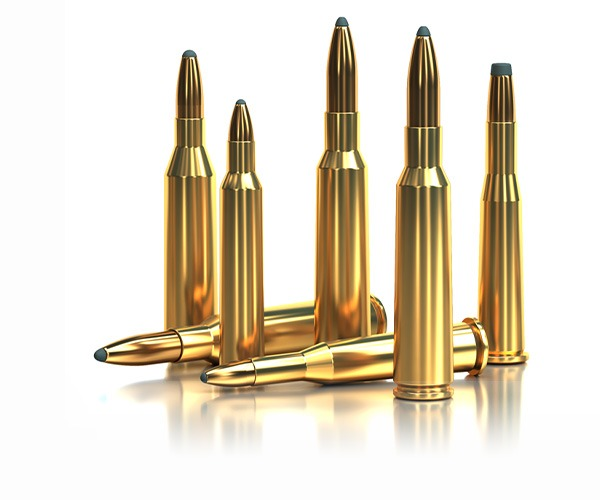 Sellier and Bellot soft point ammunition